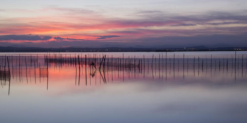 Planes románticos que hacer en Valencia con tu pareja: Paseo en barca por l´Albufera