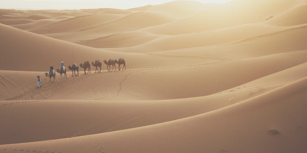 Qué ver en Marrakech: Excursión al desierto de Marrakech