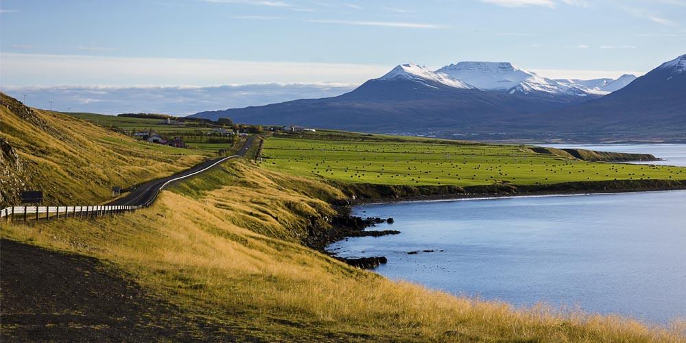 Viajar a Islandia: Moverse por la isla