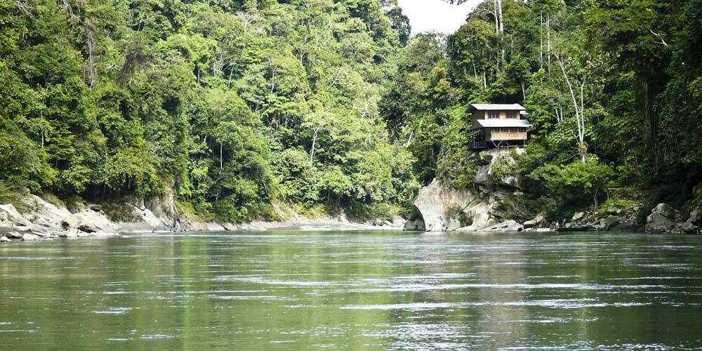 Viajar a Perú: Parque Natural de Manu
