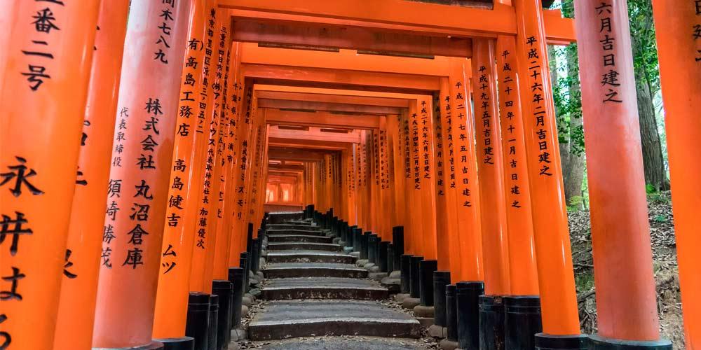 Excursión a Kioto desde Tokio: Fushimi Inari Taisha