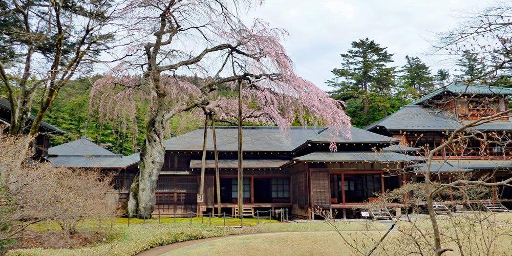 Excursión a Nikko desde Tokio: Tamozawa