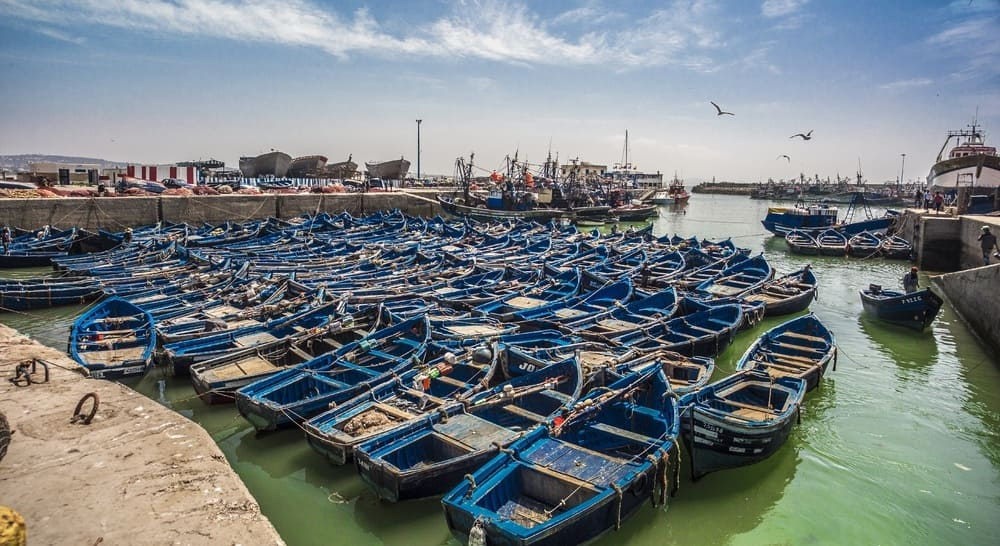 Descubre Essaouira en Noviembre, la perla del atlántico