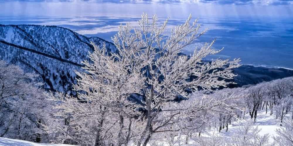 El clima en Japón en enero