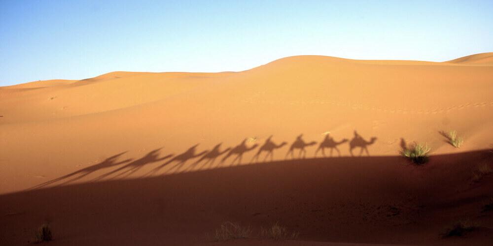 Excursión al desierto de Merzouga desde Marrakech