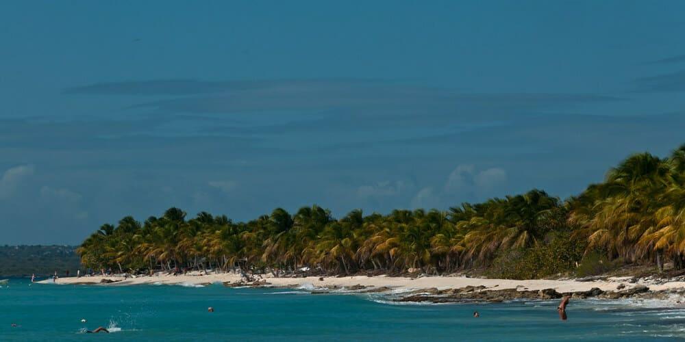 Conoce la Isla Catalina a través de una escapada desde Punta Cana