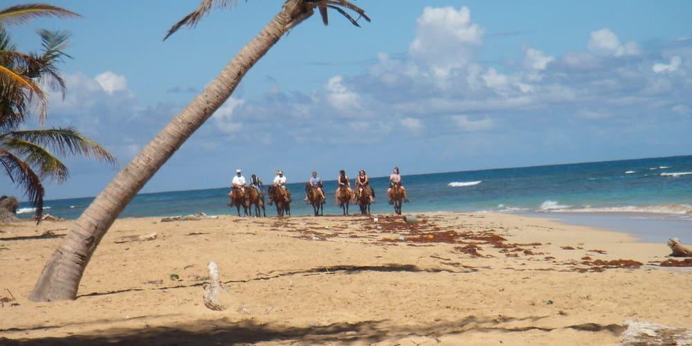 Paseo en caballo por las playas y tierras de República Dominicana