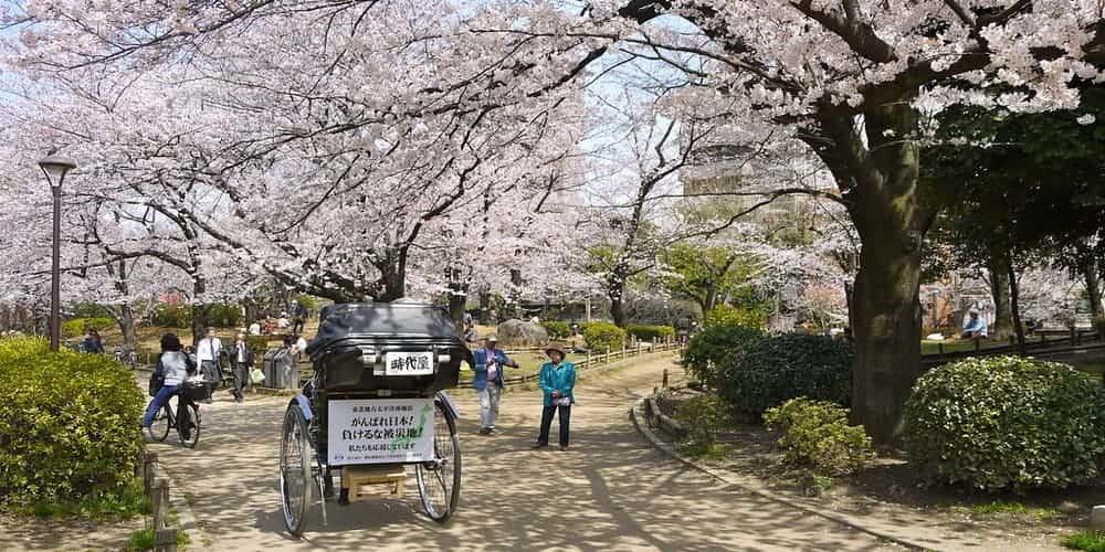 Qué hacer en Japón en enero - Tour por el barrio Asasuka en Tokio