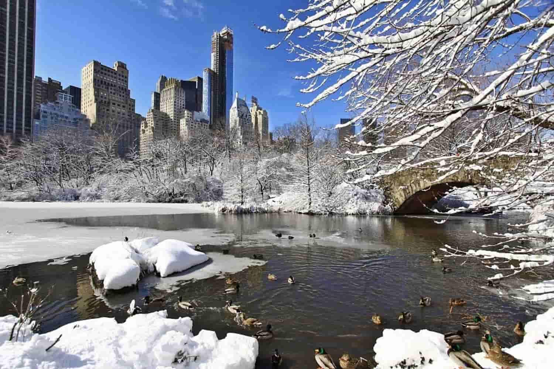 Tiempo, clima y temperatura en Nueva York en diciembre