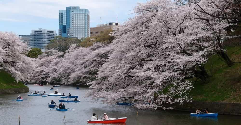 Tiempo y temperatura en Japón en enero