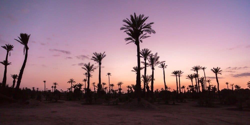 Mejores actividades para hacer con las temperaturas de Marrakech en mayo