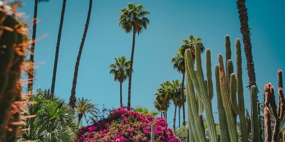 Tiempo, clima y temperatura en Marrakech en mayo