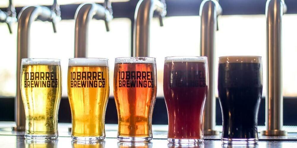Cervezas en el Octfest en Governors Island en otoño en Nueva York.