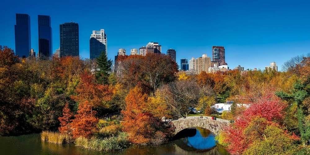Árboles coloridos en Central Park durante el otoño.
