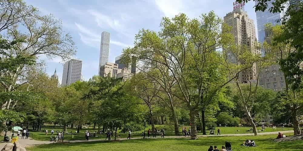 Organiza tu itinerario por Nueva York con una ruta por Central Park y sus escenarios