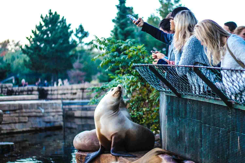 El Zoo de Central Park en Nueva York