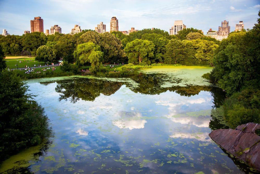 Lago de Central Park en Nueva York