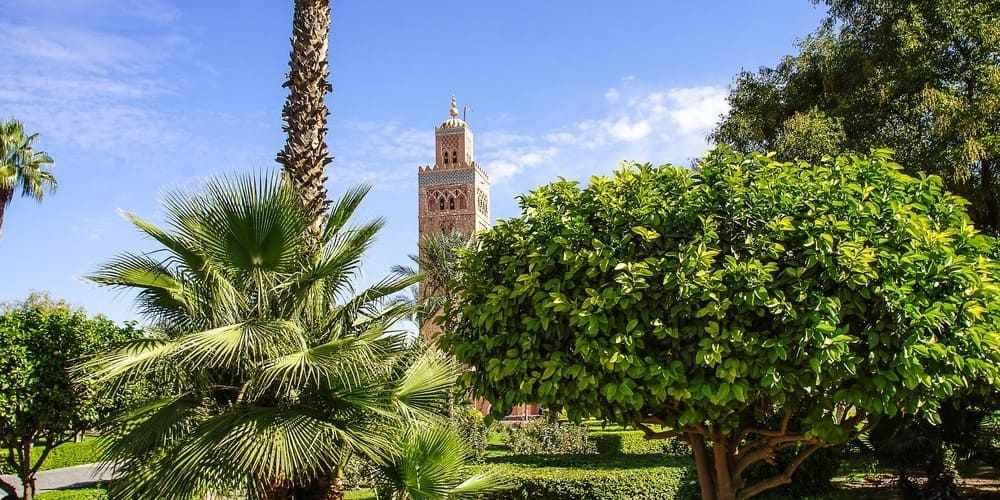 Mezquita de Marrakech vista desde los jardines.