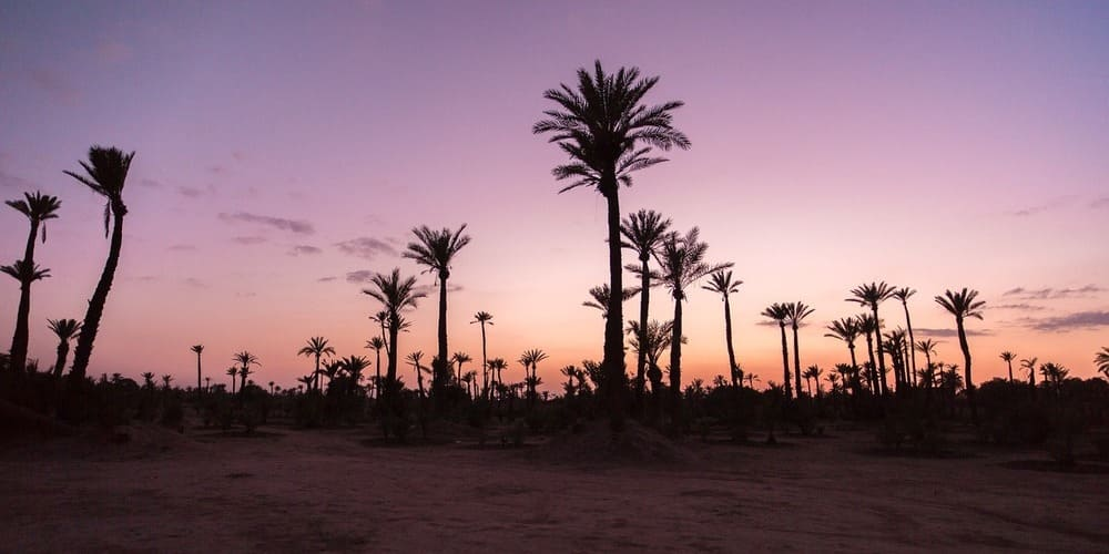 Qué hacer el fin de semana en la Ciudad Roja de Marruecos
