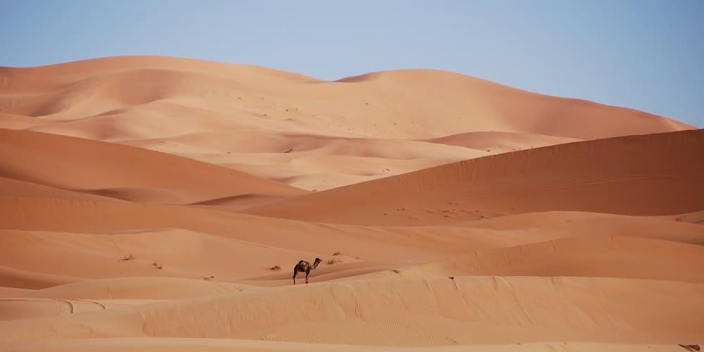 Dunas del desierto para dormir allí
