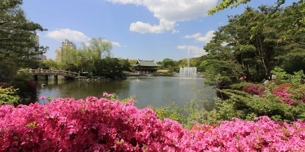 Panorámica de Central Park durante el itinerario por Nueva York en 4 días