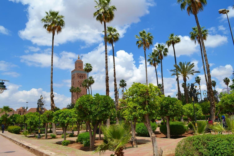 Vegetación en Marrakech en septiembre