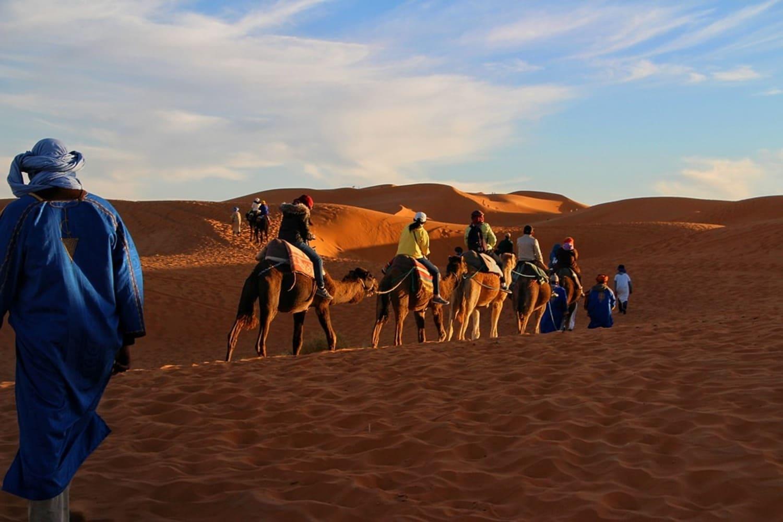 Caravanas de camellos por el desierto del Sáhara