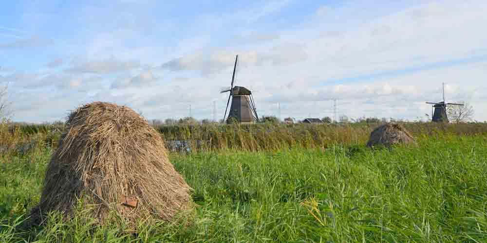 Pueblo de Kinderdijk con un molino de viento al fondo.