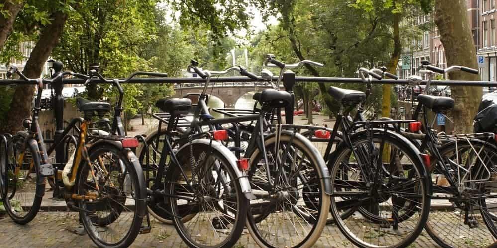Excursiones por los alrededores de la capital de los Países Bajos