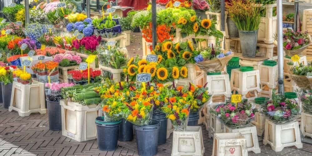Conoce el mercado de las flores en tu viaje de dos días a la capital holandesa