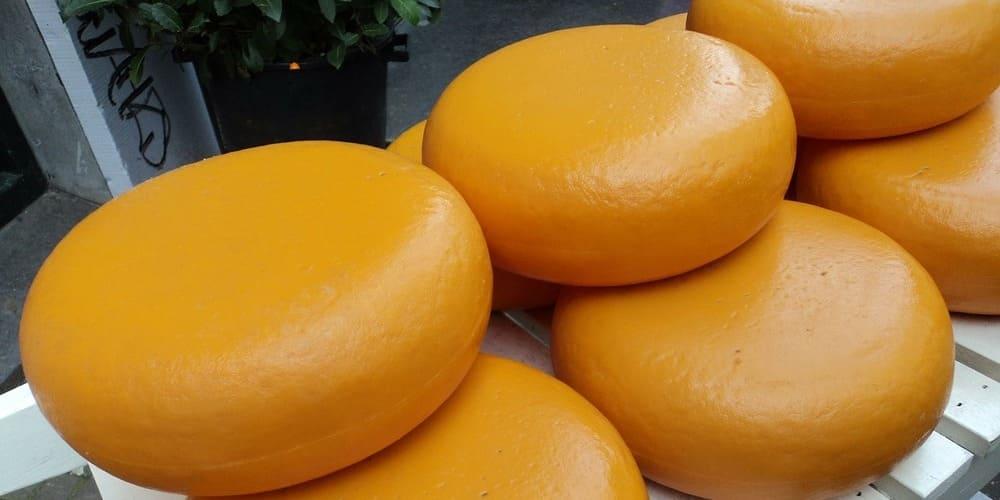 Queso Gouda, producto típico de la ciudad de los canales