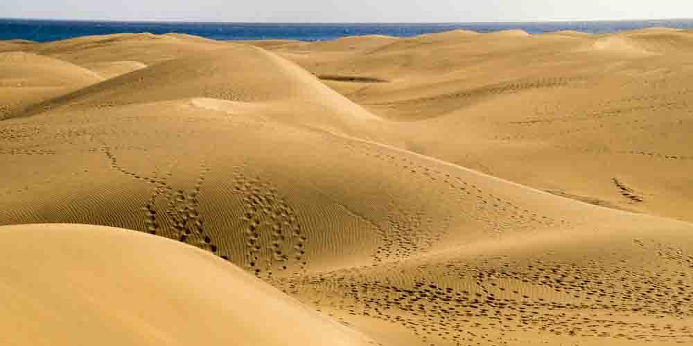 Las dunas de Maspalomas en Gran Canaria.