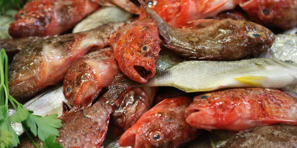 Pescado en un mercado de Ibiza