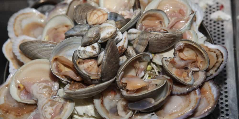 En los restaurantes donde comer en Santiago de Compostela se sirve marisco de la mejor calidad