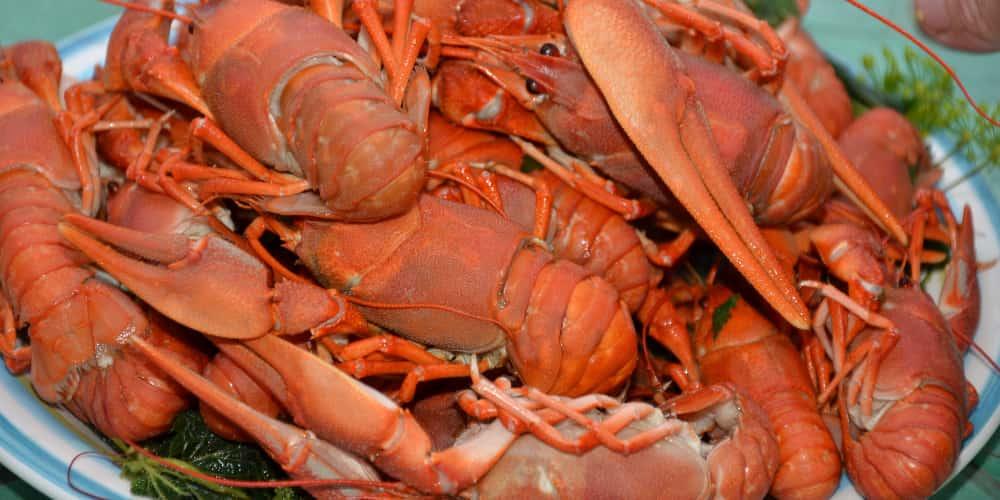 Los cangrejos son otro producto típico de Galicia