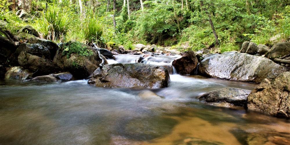 Montseny, paisaje natural.