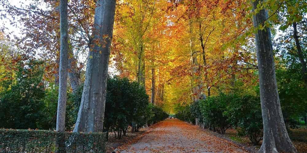 Jardín del Parterre, pasea por sus preciosas zonas ajardinadas