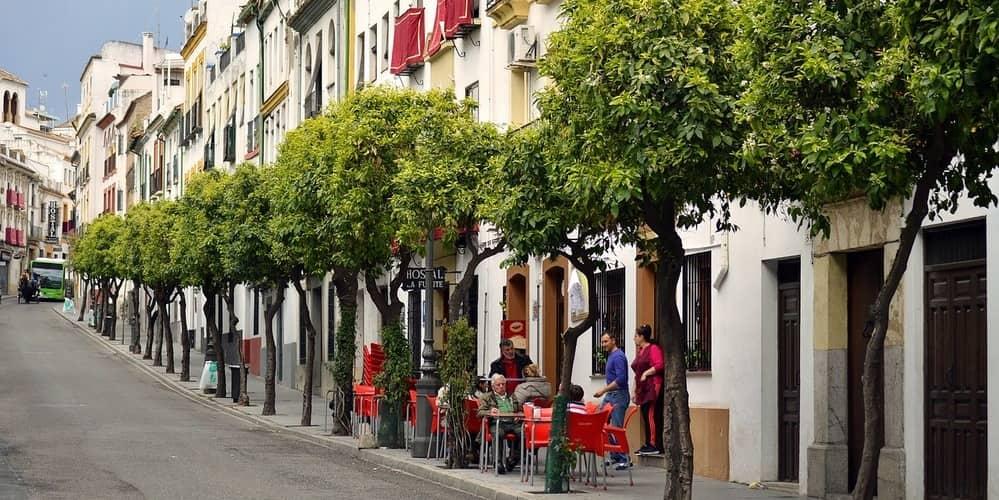 Mejores bares y restaurantes para disfrutar de la gastronomía de Andalucía en Córdoba