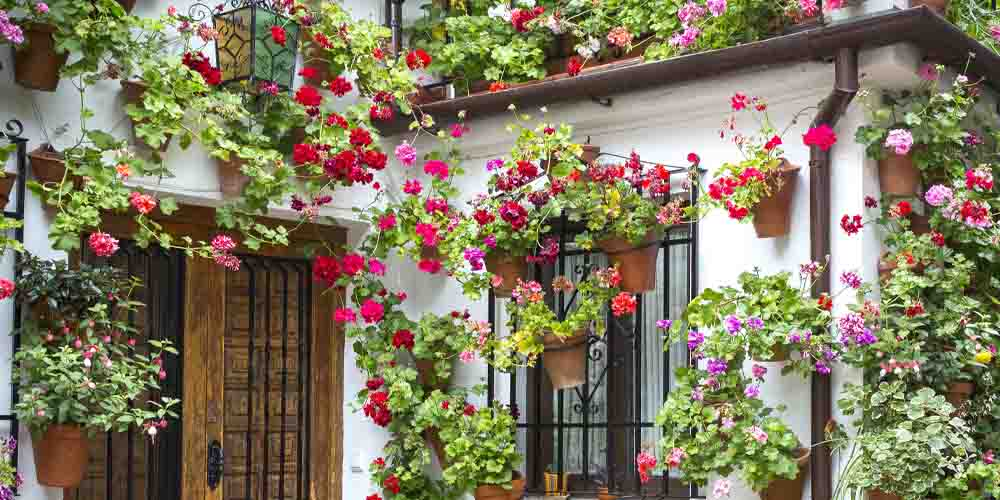 Patio que ver en la Judería de Córdoba.