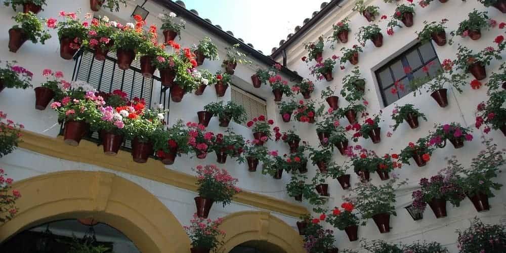 Los Patios cordobeses, uno de los lugares imprescindibles que visitar en Córdoba en un día