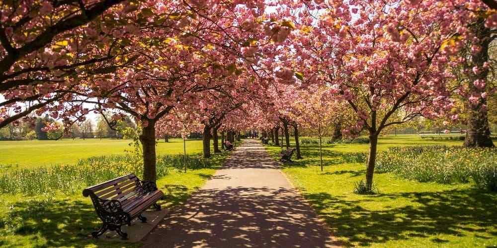 Hyde Park, el parque más famoso de Londres
