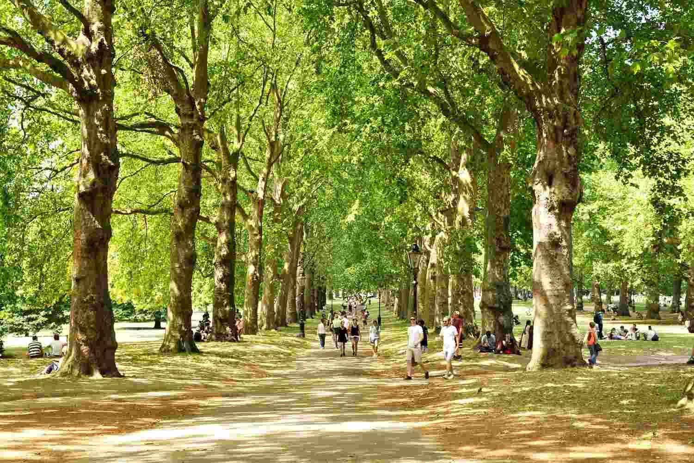 Los 6 mejores parques de Londres para visitar