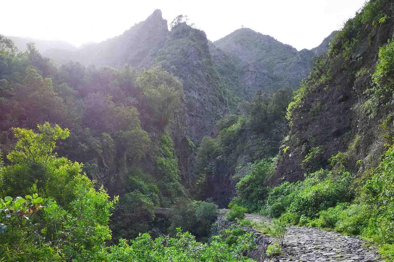 Senderos de Tenerife – Rutas de senderismo circulares, fáciles, costeras y mucho más
