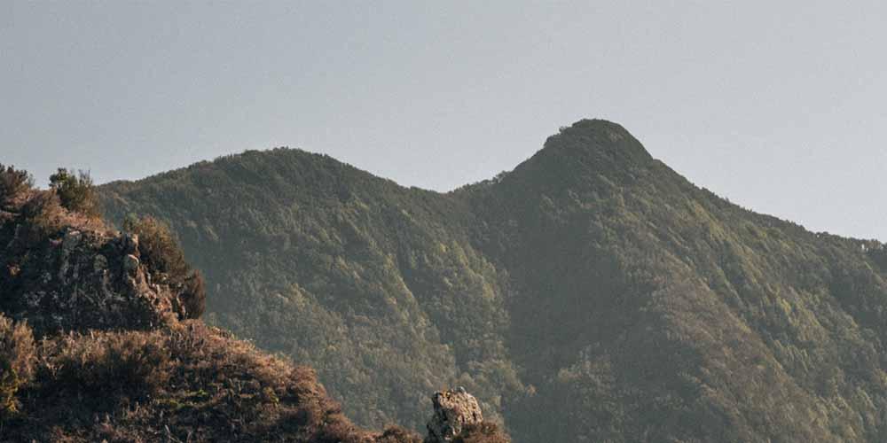 Vista del parque de Anaga donde hacer una ruta en la visita a Tenerife de 5 días.