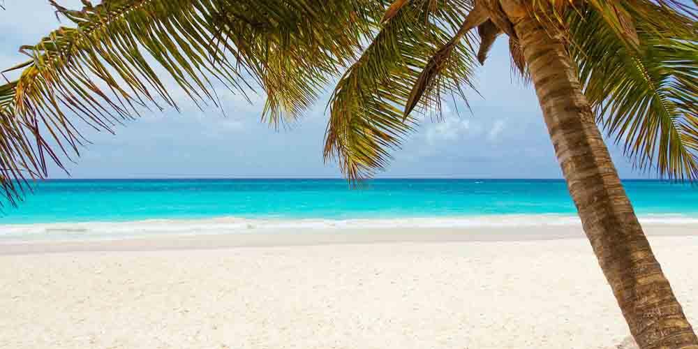 Imagen de la Playa Paraíso en Tulum.